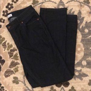 Loft dark wash curvy straight jeans
